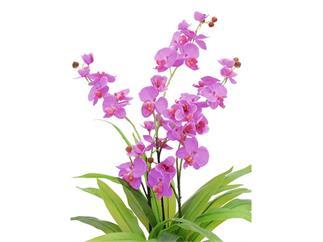 Europalms Orchidee, lila, 80cm, Kunstpflanze