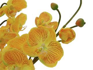 Europalms Orchideenarrangement EVA, gelb - Kunstpflanze
