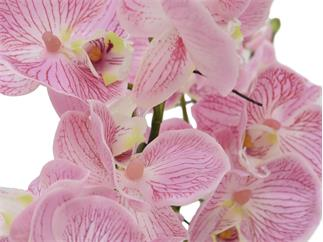 Europalms Orchideenarrangement EVA, lila - Kunstpflanze