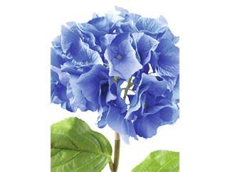 Europalms Hortensienzweig, blau, 76cm - Kunstpflanze