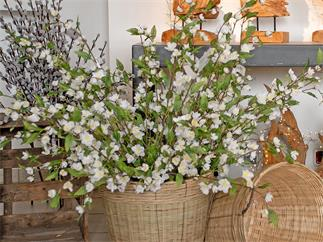 EUROPALMS Kirschzweig, cremefarben, 60cm, Kunstpflanze