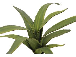 Europalms Aloe (EVA), grün, 66cm - Kunstpflanze