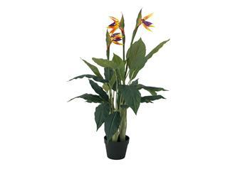 EUROPALMS Strelizie, Kunstpflanze, 90cm