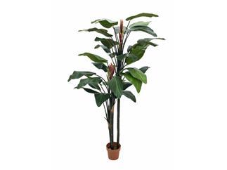 Strelizie mit zwei gr. Blüten  220cm, Paradiesvogelblume, Kunstpflanze