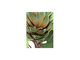 EUROPALMS Königsstrelizie, 180cm Kunstpflanze