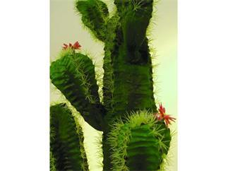 Europalms Mexikanischer Kaktus, 170cm Kunstpflanze