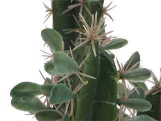 EUROPALMS Mexikanischer Kaktus mit Blättern, Kunstpflanze, 75cm