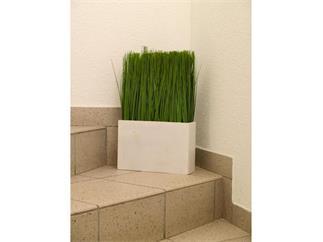 Dünengras im Holztopf, 50x30cm, Kunstpflanze