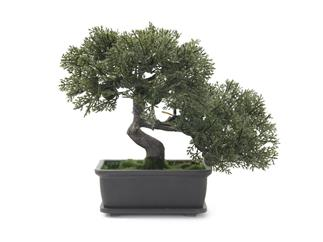 Europalms Bonsai, 21cm - Kunstpflanze