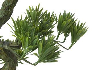 EUROPALMS Bonsai Pinie, Kunstpflanze, 70cm