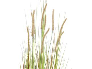 Europalms Lampenputzergrasbusch, 120cm - Kunstpflanze