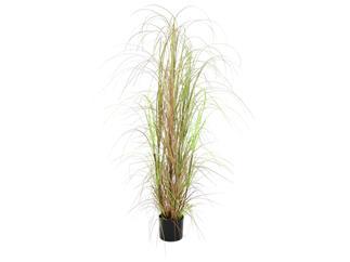 Europalms Grasbusch, 150cm - Kunstpflanze