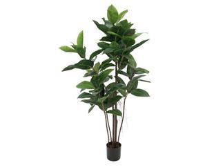 Europalms Gummibaum, 120cm - Kunstpflanze