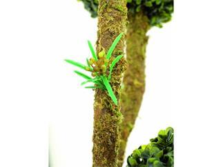 Buchskugelbaum 6-fach im Zementtopf 163cm, Kunstpflanze
