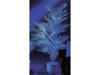 Europalms Kentiapalme, uv-weiß, 90cm - Kunstpflanze