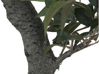 Europalms Ficus Waldbaum, 80cm - Kunstpflanze