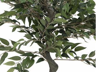 Europalms Ficus Waldbaum, 110cm - Kunstpflanze