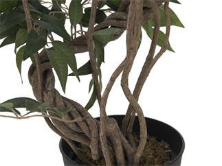 Europalms Ficus Multi Spiralstamm, 130cm - Kunstpflanze