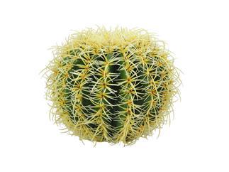 Europalms Goldkugelkaktus, 27cm - Kunstpflanze