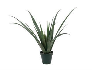 Aloe Vera Pflanze 24 Blätter  79 cm, Kunstpflanze