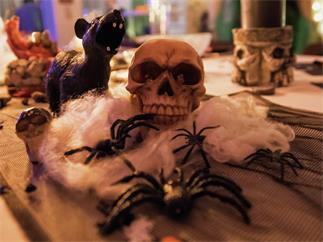Europalms Halloween Spinnennetz weiß 20g UV-aktiv