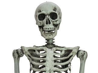 EUROPALMS Halloween Skelett stehend, 160cm