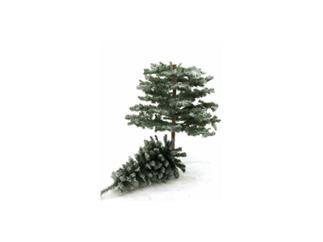 Tanne Naturstamm beschneit, 180cm, Christbaum, Weihnachtsbaum