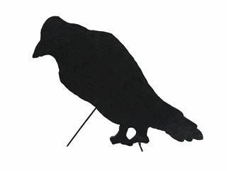 EUROPALMS Silhouette Krähe, 63cm