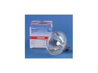 Osram Par 30 230V 75W Spot