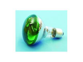 Reflektorlampe OMNILUX R80 230V/60W E-27 grün