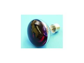 Reflektorlampe OMNILUX R80 230V/60W E-27 violett