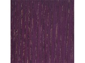Bartek Beize Violett, 450ml permanent färbend, auf Wasserbasis