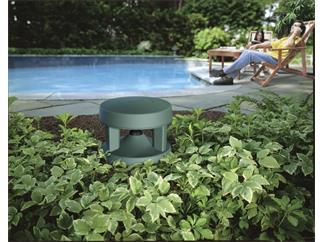 Bose® FreeSpace® 360P-II 100V Granit-Grün