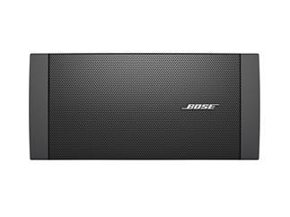 Bose® FreeSpace® DS 100SE schwarz