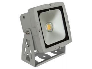 Briteq - LDP-COBWASH Outdoor LED 50W warmweiß