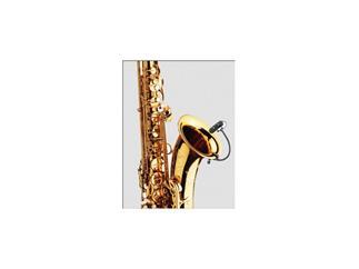 DPA d:vote 4099S Instrumentenmikrofon für Saxophon, Superniere, flexible Halterung
