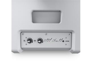 LD Systems MAUI 11 G2 W