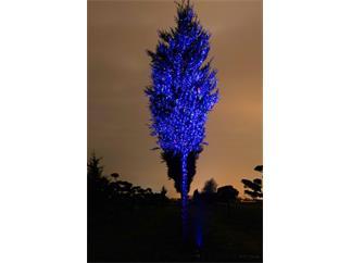 Laserworld Garden Star RGB weißes Gehäuse - Laserworld GS-100RGB move white