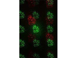 Laserworld GS-50RG Xmas Gartenlaser rot-grün IP67