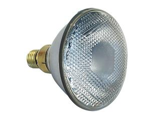 Showtec Par 38 E27 Flood 240V 90W