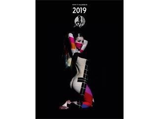 VT-Kalender 2019 Pin-Up Akt Erotik Wandkalender mit Veranstaltungstechnik