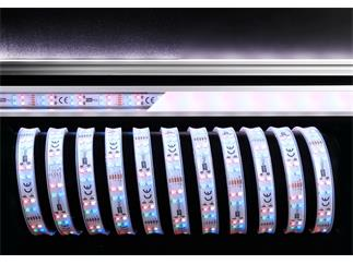 Flexibler LED Stripe, 3528, SMD, RGB + Kaltweiß, 12V DC, 36,00 W