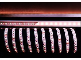 Kapego Flexibler LED Stripe 24V 5050 SMD RGB+WW 5m