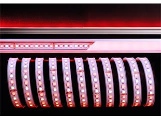 Kapego Flexibler LED Stripe 24V 5050 SMD RGB+WW 5m