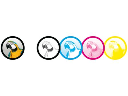 Glasgobo Multicolour    Erstanfertigung