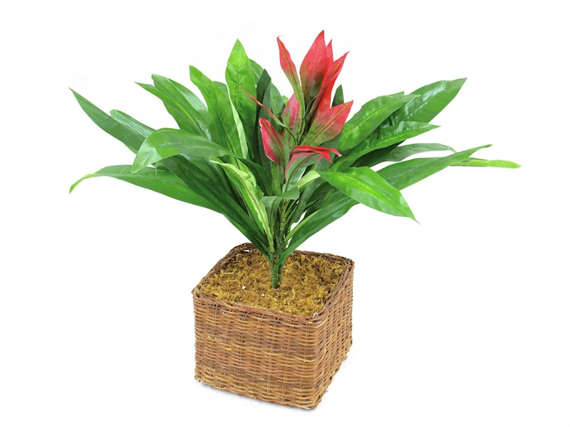 Guzmania mit roter Blüte, Kunstpflanze