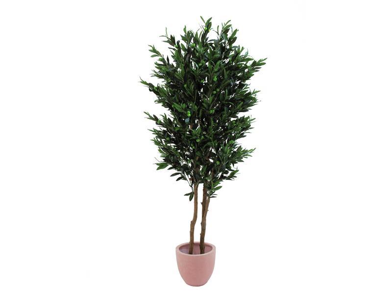 Europalms Olivenbaum mit Früchten, 2-stämmig, 165cm - Kunstpflanze