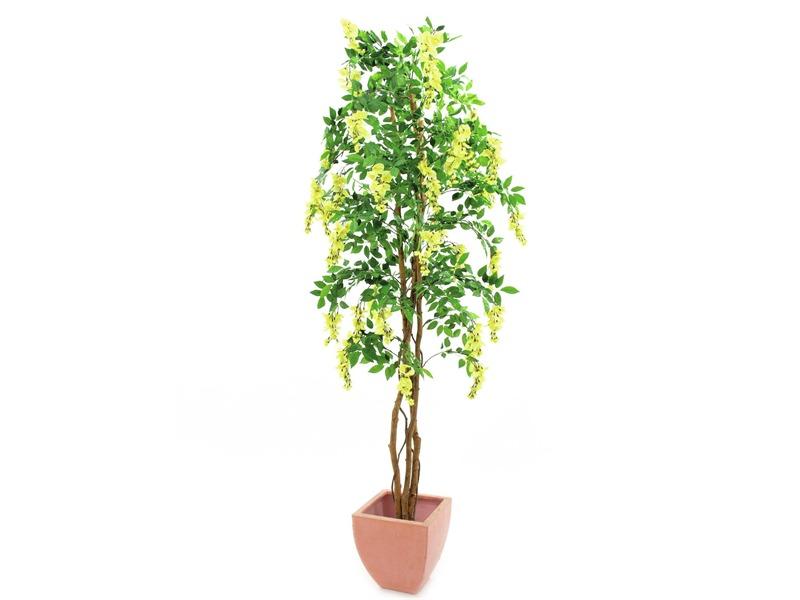 Europalms Goldregenbaum gelb Zementfuß 240cm, Kunstpflanze