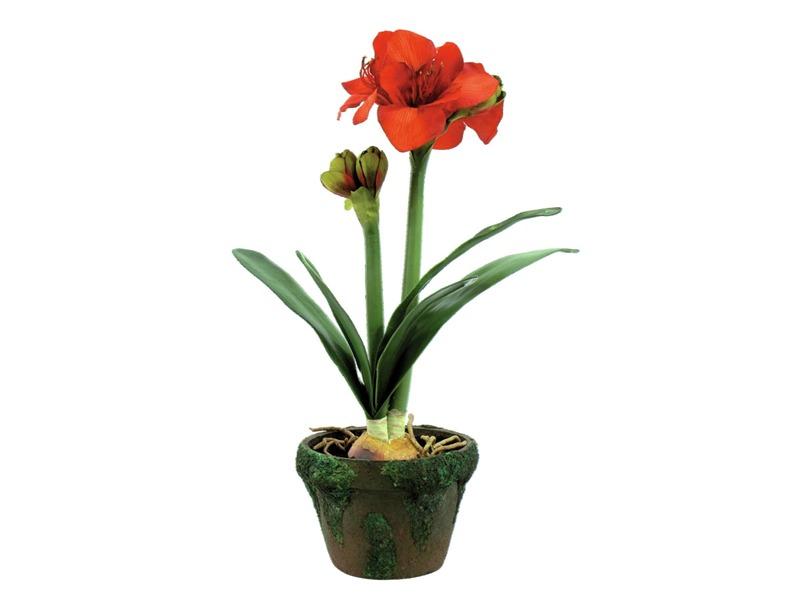 amaryllis sehr naturgetreu im topf 60cm kunstpflanze. Black Bedroom Furniture Sets. Home Design Ideas