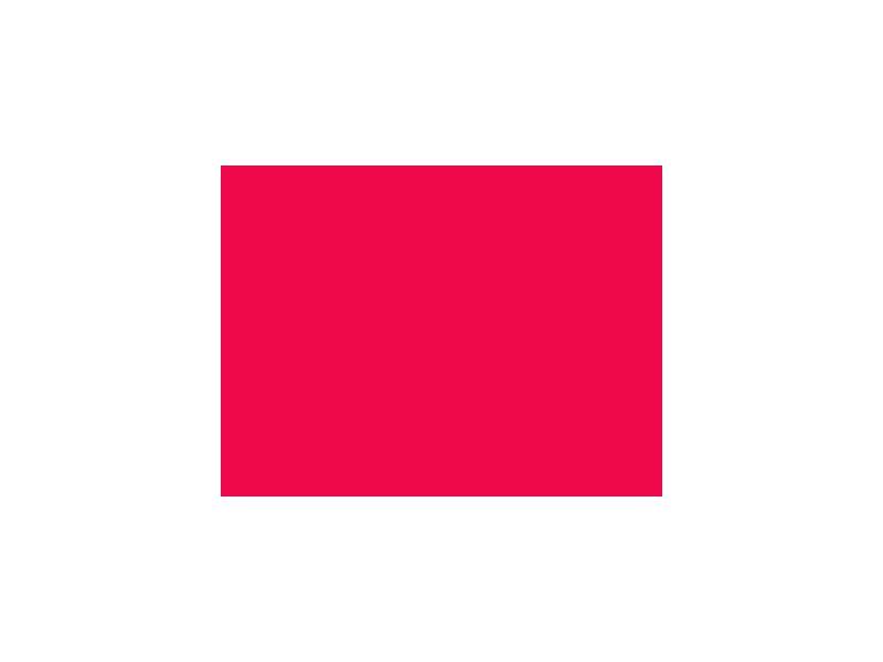 LEE-Filters, Nr. 024, Rolle 762x122cm,normal, Scarlet